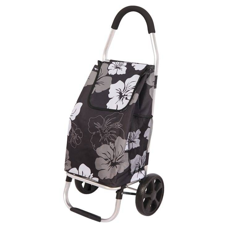 Zinc Steel Coil With Color Salt Pepper -