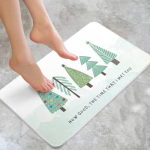 Fast Dry Diatomaceous Earth Floor Mat
