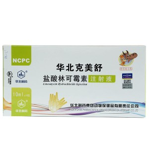 Lincomycin Hydrochloride Injection