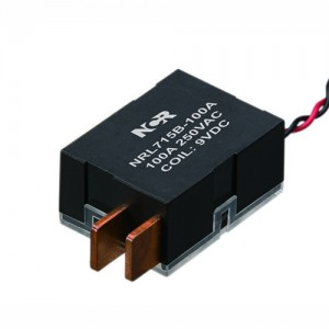 100A Magnetic Latching Relays-NRL715B