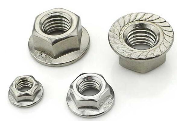 Stainless Steel Hex Flange Nut DIN6923