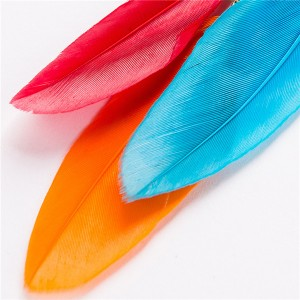 Wholesale Europe And The United States Popular Earrings Women Colorful Long Feather Earrings