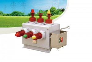 TZW10-12 Outdoor high voltage vacuum circuit breaker