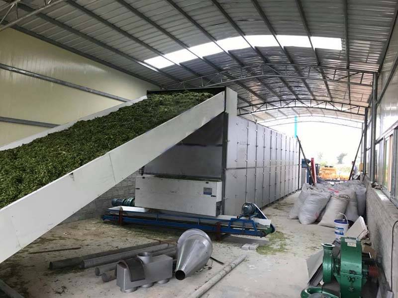 Popular Design for Tree Shredder - Continuous belt dryer – OPPS