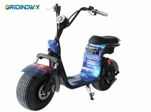OEM/ODM Supplier Electric Scooter 1200w -
