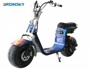 Short Lead Time for City Coco -