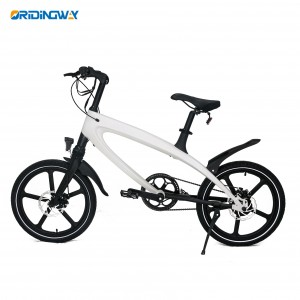 ORIDINGWAY Electric bike 240w pedal electric cycle bike