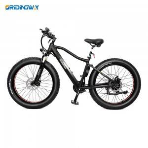 Electric mountain bike big wheel motor bicycle ORIDINGWAY