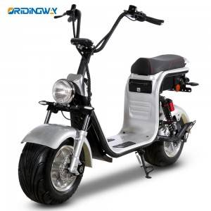 EEC approval big wheel harley e scooter double battery