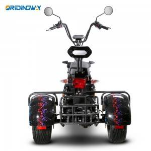 3 wheel Citycoco tricycle harley chopper for golf