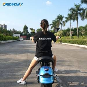 ORIDINGWAY electric scooter citycoco m8 europea...