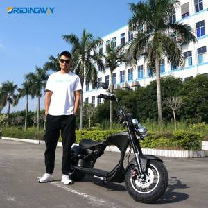 Best citycoco harley | Oridindway Mangosteen Ci...