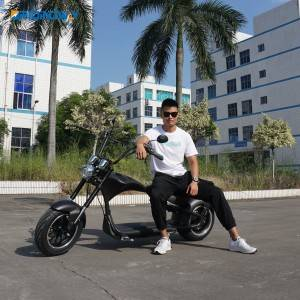 Best citycoco harley | Oridindway Mangosteen Citycoco Harley Electric Scooter