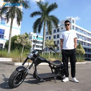 ORIDINGWAY super chopper EEC citycoco harley scooter
