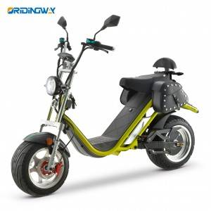 ORIDINGWAY DAYI EEC scooter harley citycoco