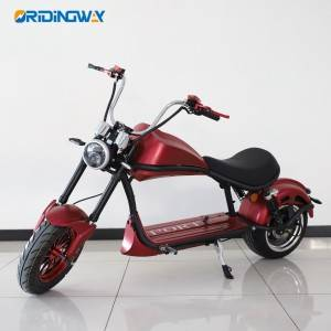 2020 new EEC big wheel scooter citycoco