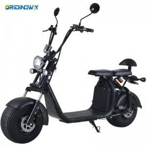 Big discounting Electric Motorcycle 1000w -