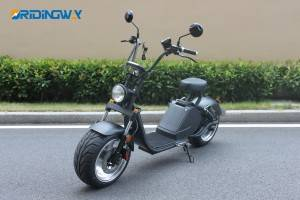 ORIDINGWAY Caigiees EEC big wheel electric scooter