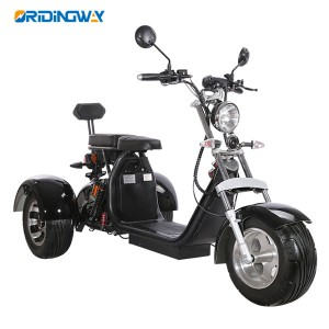COC 1500W 3 wheel big wheel electric scooter EEC cityccoco with removable battery