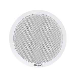 NT-215 2*15 IP Network Ceiling speaker