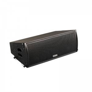 "PA-10A 10""  Linear Array Speakers (Passive/Active With Processor)"