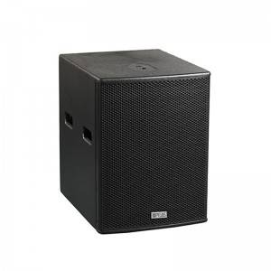 "PA-10B 10""250W Subwoofer Picture Show"