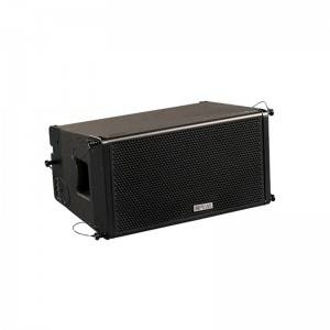 "PA-2A 10"" Linear Array Speaker (Passive Active With Processor)"