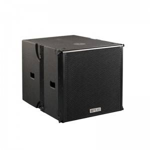 "PA-2SUB 18"" Linear Subwoofer (Active With Processor)"