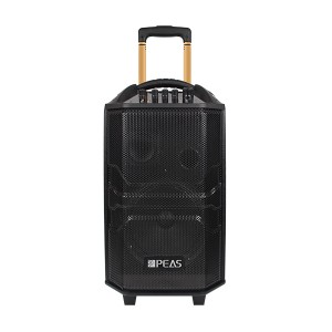 China Cheap price Simultaneous Translation System -