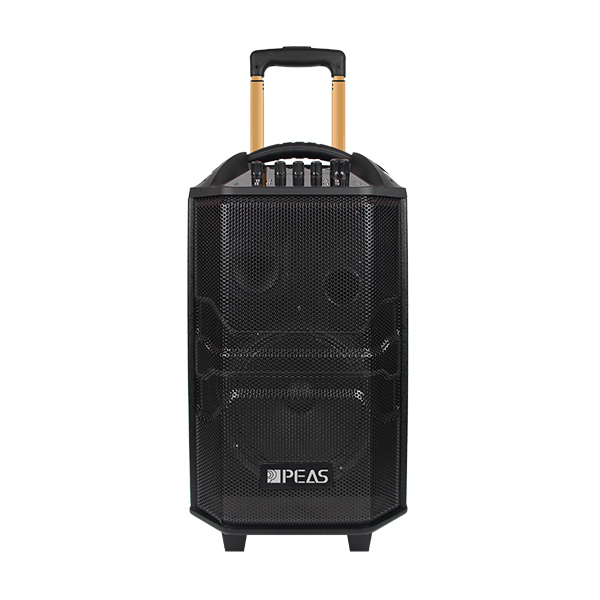 "China Cheap price Simultaneous Translation System - PS-1229 Outdoor 12"" 100W Trolley Speaker  – Q&S"