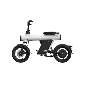 Central Suspension-Removable Battery Bicycle-Electric Moped