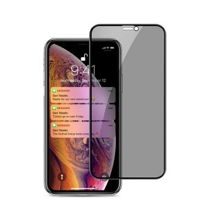 Privacy Screen Protector For Apple iPhone XS 5.8 inch Premium 9H Tempered Glass Film