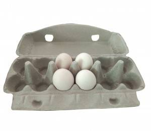 Custom egg paper pulp mold tray egg paper tray