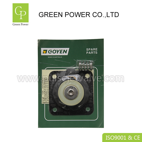 China New Product Face Mask With Valve - K2503 diaphragm repair kits viton membrane CA25T CA25DD goyen pulse valve  – Green Power