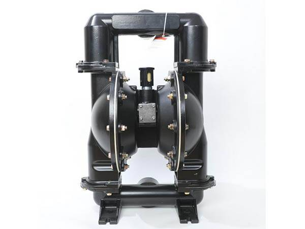 Free sample for Compressed Air Membrane Pump -