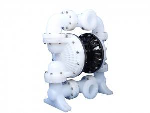 China Cheap price Duplex Diaphragm Pump -