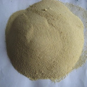 Amino Acid 50% Powder Organic