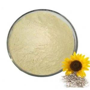 Sunflower Seed Protein