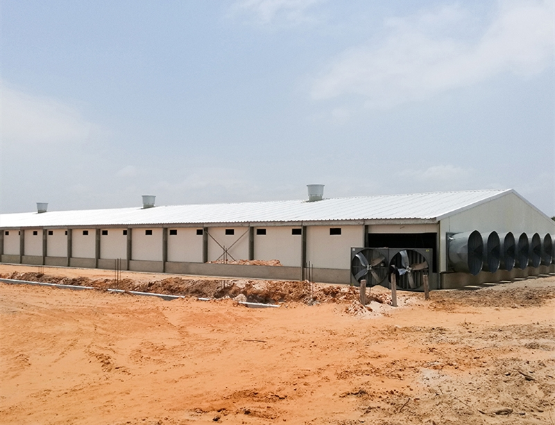 Prefabricated Galvanized Steel Structure Chicken House in Africa from China