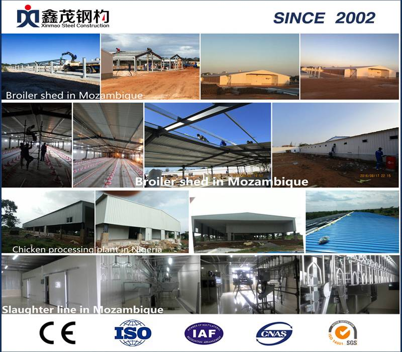 Professional Design Quick Build Houses - Economic Customized Steel Structure Poultry House – Xinmao ZT Steel