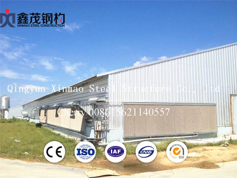 Nigeria Steel Structure Poultry House Show