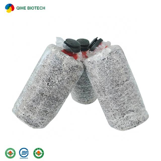 China OEM/ODM Manufacturer Shiitake Mushroom Spawn Substrate
