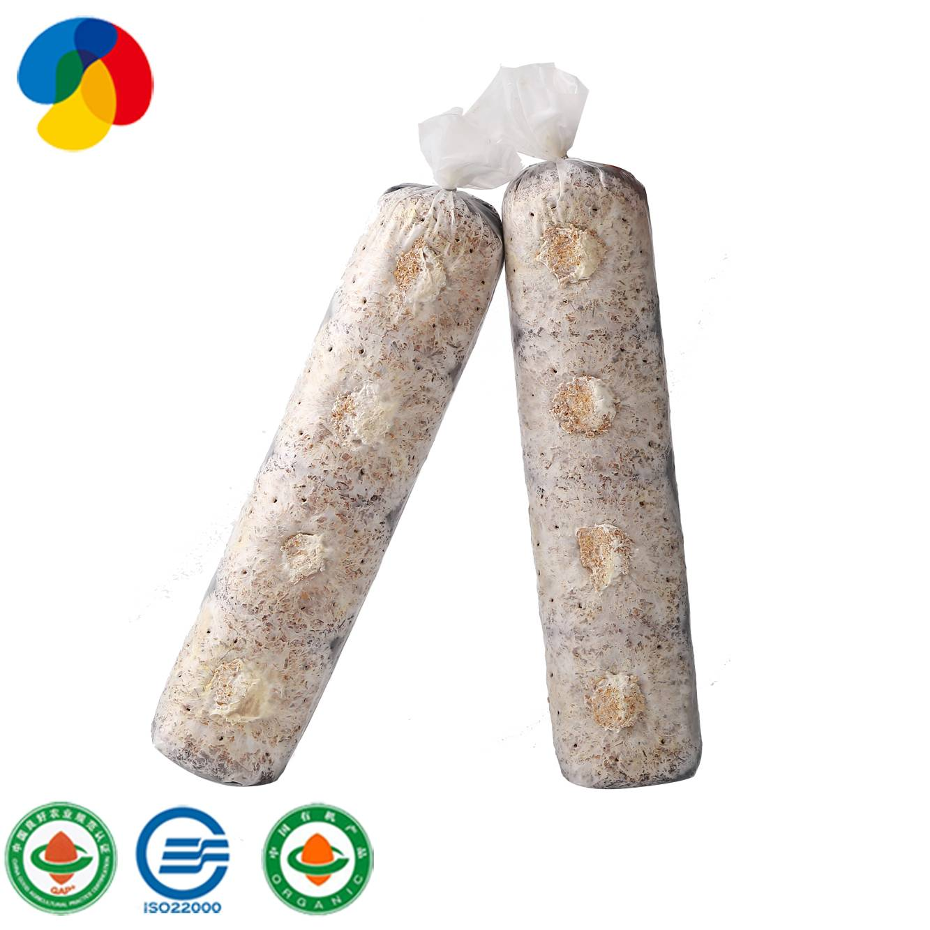 2020 Good Quality Shiitake Mushroom Substrate Spawn Sticks For Sale