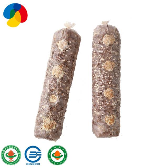 Factory wholesale shiitake mushroom spawn stick spores plugs