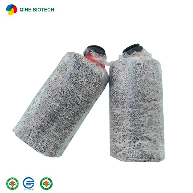 Factory Outlets Edible Fungi - Qihe Oyster Mushroom Logs – Qihe