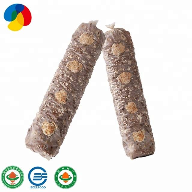 Big Discount Mushroom Gowing Kits - 2020 QIHE  frozenmushroom spawn Factory direct sale ISO22000 certificated – Qihe