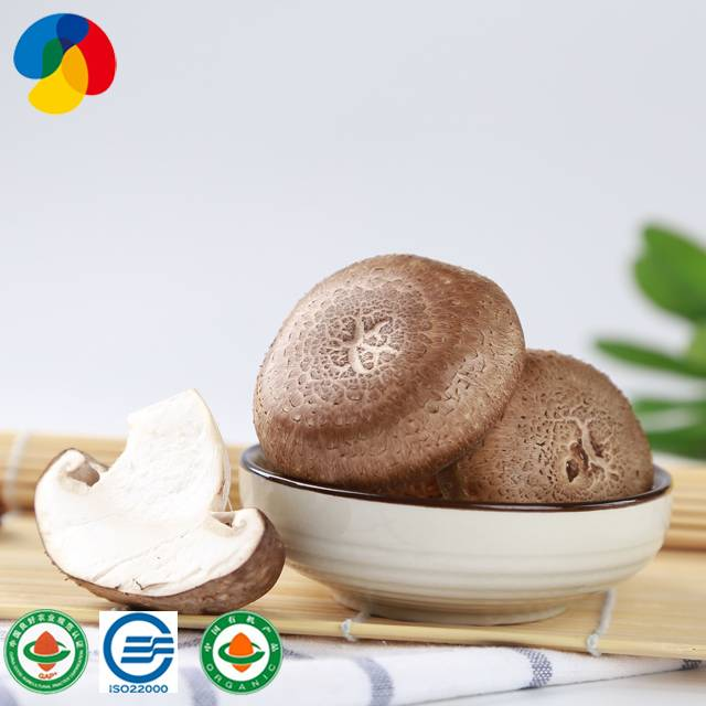 Factory source Pleurotus Ostreatus Mushroom Mycelium - Hot sell manage easily shiitake mushroom spore growing substrate – Qihe detail pictures