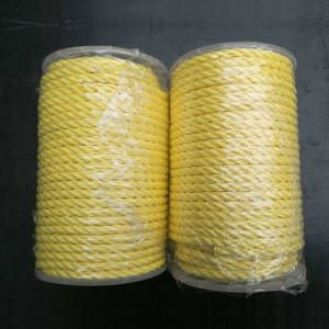 Quality Inspection for Dock Line For Ship - High Strength 3 Strands Polyester Rope – Florescence