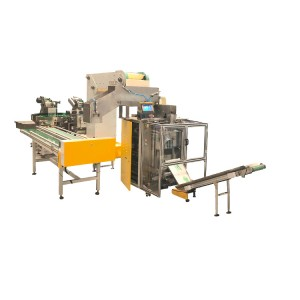 Pipe Fittings Packing Machine Bagging and Cartoning Packing Machine