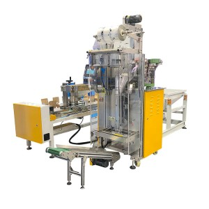 Multi function box packaging machinery with bagging system